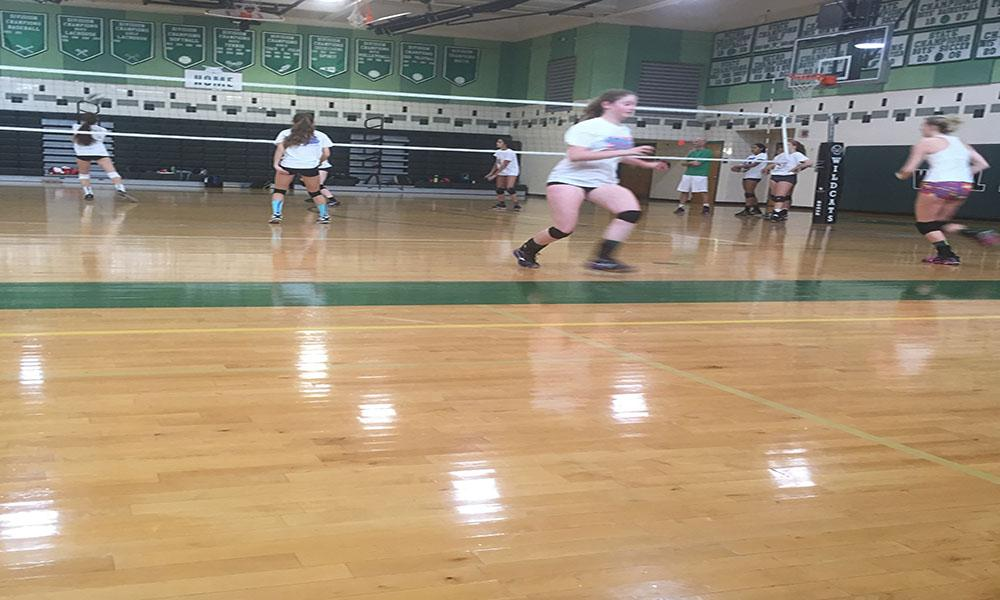 Persistence could be key to the future success of girls volleyball