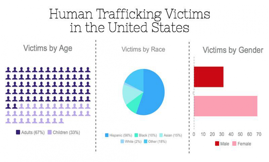 America's harsh reality: human trafficking – The Pitch