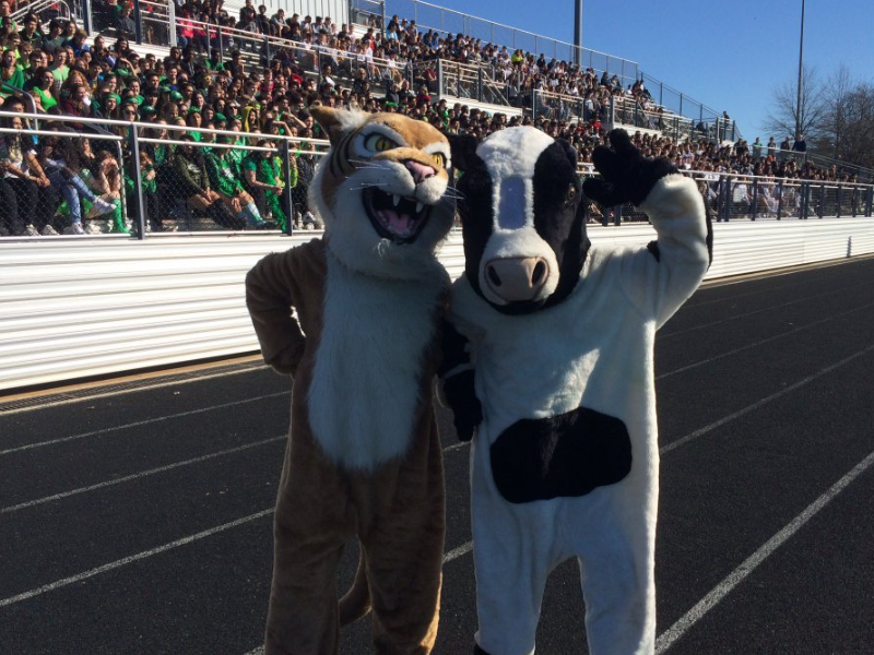 Spring pep rally is a schoolwide hit