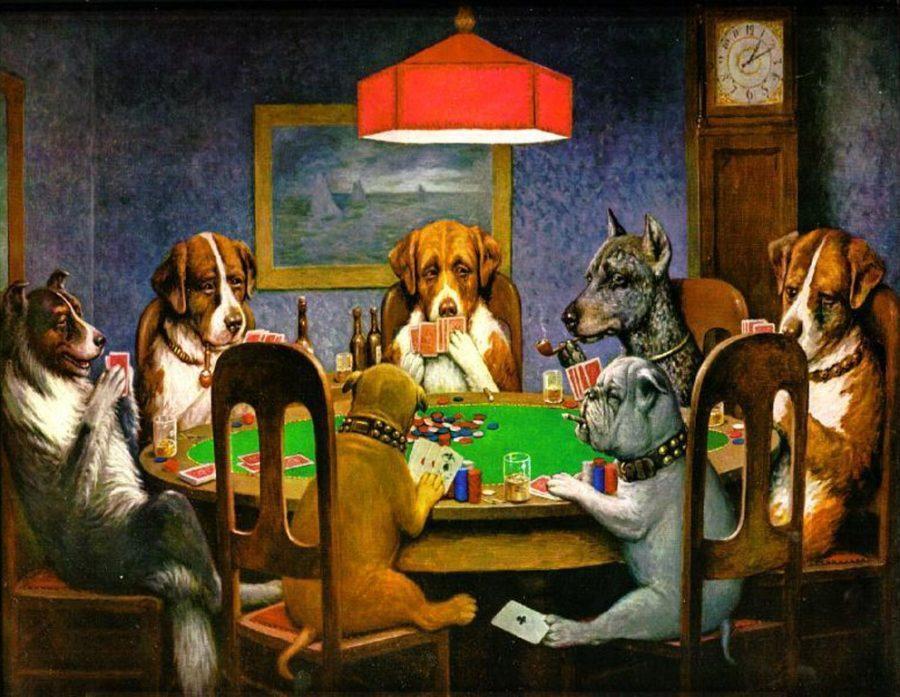 CATCH%3A+Dogs+-+Truly+man%27s+best+friend