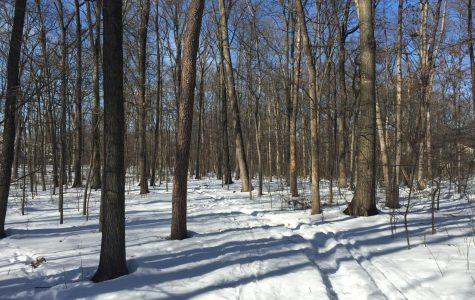Educator revolutionizes days off with Moco Snow