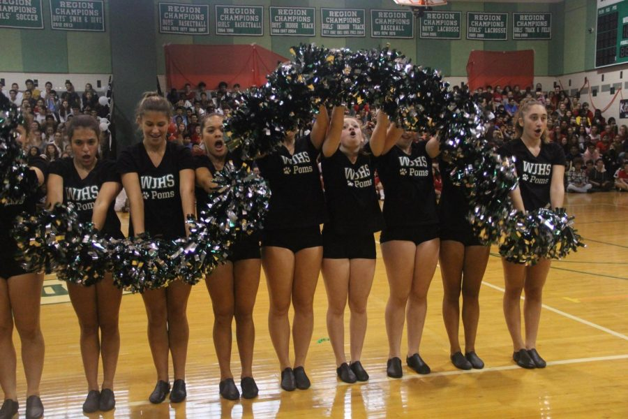 Poms+perform+the+snake+at+the+fall+pep+rally.+The+snake+has+always+been+a+fan+favorite+at+WJ.