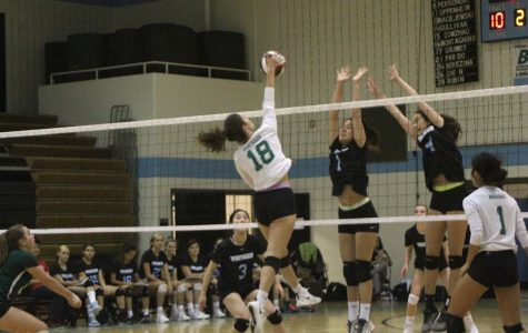 Girls' volleyball reaches playoffs