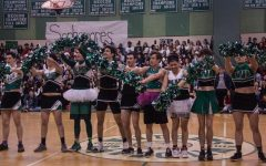 Male poms replace real poms
