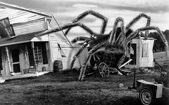Pictured above is one of the many gargantuan arachnids to appear in