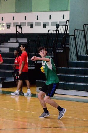 Handball cut from fall sports roster