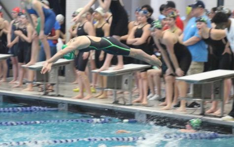 Sophomore Lianna Rosman dives into the water during a school meet. Winter sport athletes have prepared during the offseason to contribute to the success of their teams.