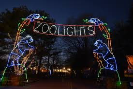 A perfect activity to do during winter break is to visit the Smithsonian Zoo at night. During the holiday season the zoo is covered in festive holiday lights.