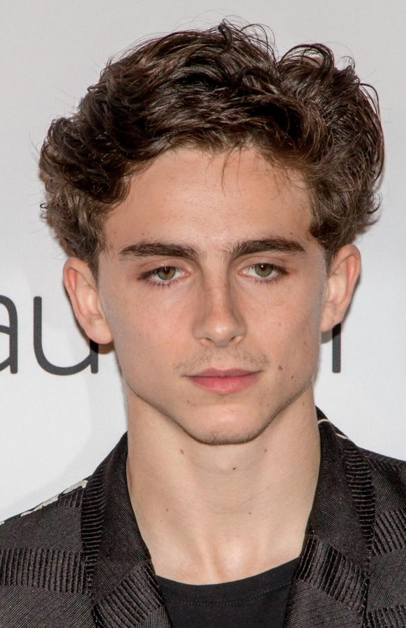 Actor+Timothee+Chalamet+at+the+2018+Toronto+Film+Festival.