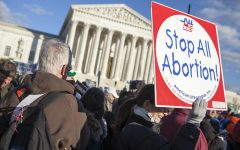 Pro-life activists gather in front of the Supreme Court. Thousands of protesters attend the March For Life every year which have occurred ever since the Roe v. Wade decision.