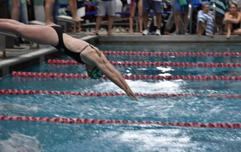 Freshman Marren Conze is pictured diving in at one of her meets. Strong underclassmen have always played a key role in the success of the team.