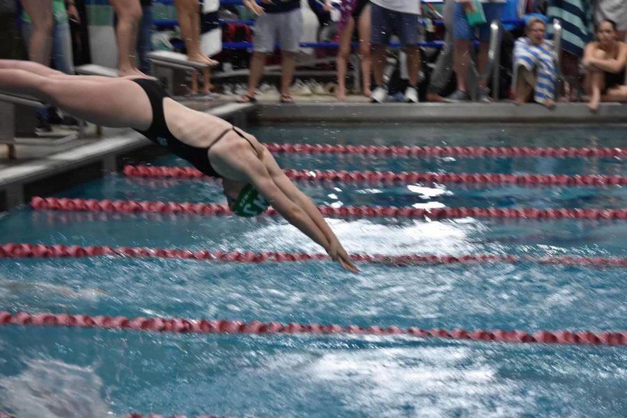 Freshman+Marren+Conze+is+pictured+diving+in+at+one+of+her+meets.+Strong+underclassmen+have+always+played+a+key+role+in+the+success+of+the+team.