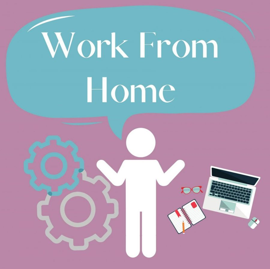 There are multiple ways to work from home over the summer!
