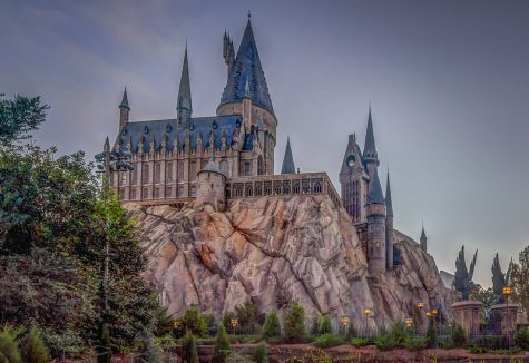 With places such as Harry Potter World and Universal studios shut down, Harry Potter fans take to the internet to create new fun filled activities for fans of all degrees to take part in.