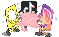 Your Brain on Tiktok