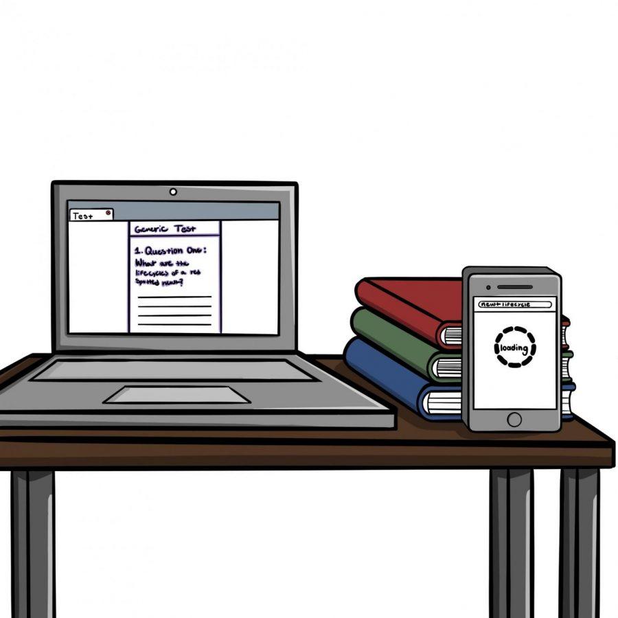 Virtual school exacerbates cheating culture