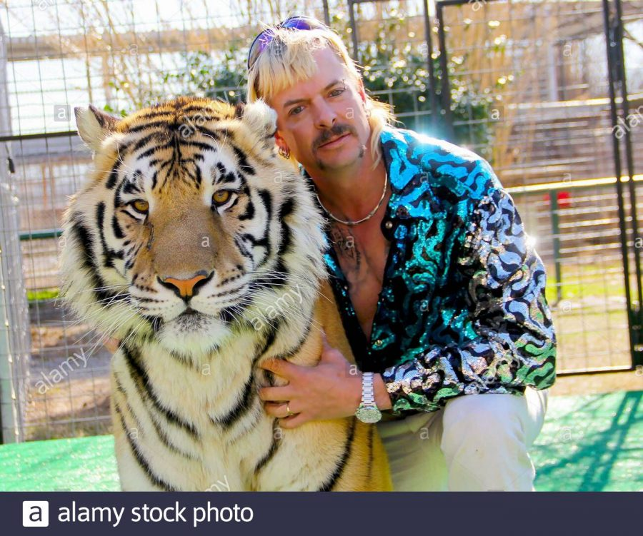 Joe+Exotic%2C+one+of+the+stars+of+Netflix%27s+Tiger+King+pictured+with+a+tiger.+Tiger+King+a+popular+tv+show+released+during+quarantine.