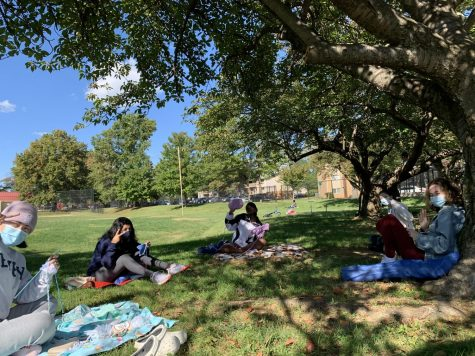 Members of the knitting club gather at a local park to knit for charity. Their finished products will be delivered to nearby hospitals for hospitalized children.