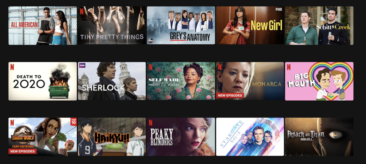Netflix displays just a handful of shows and movies that have English subtitles. Subtitles allow for increased understanding and can broaden viewers horizons beyond contents in their native languages.